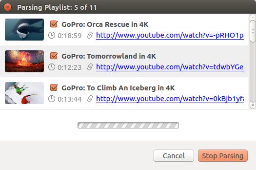 wait-until-application-gets-all-information-about-playlist_ubuntu