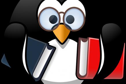 Resultados encuesta mejor distribución Linux de 2017