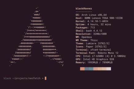 Cómo saber qué versión de Ubuntu estamos usando