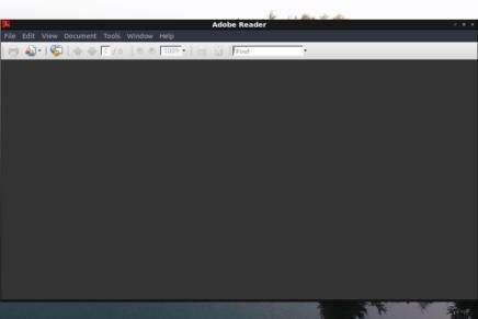 Cómo instalar Adobe Acrobat Reader en Ubuntu 20.04 (y sus alternativas)